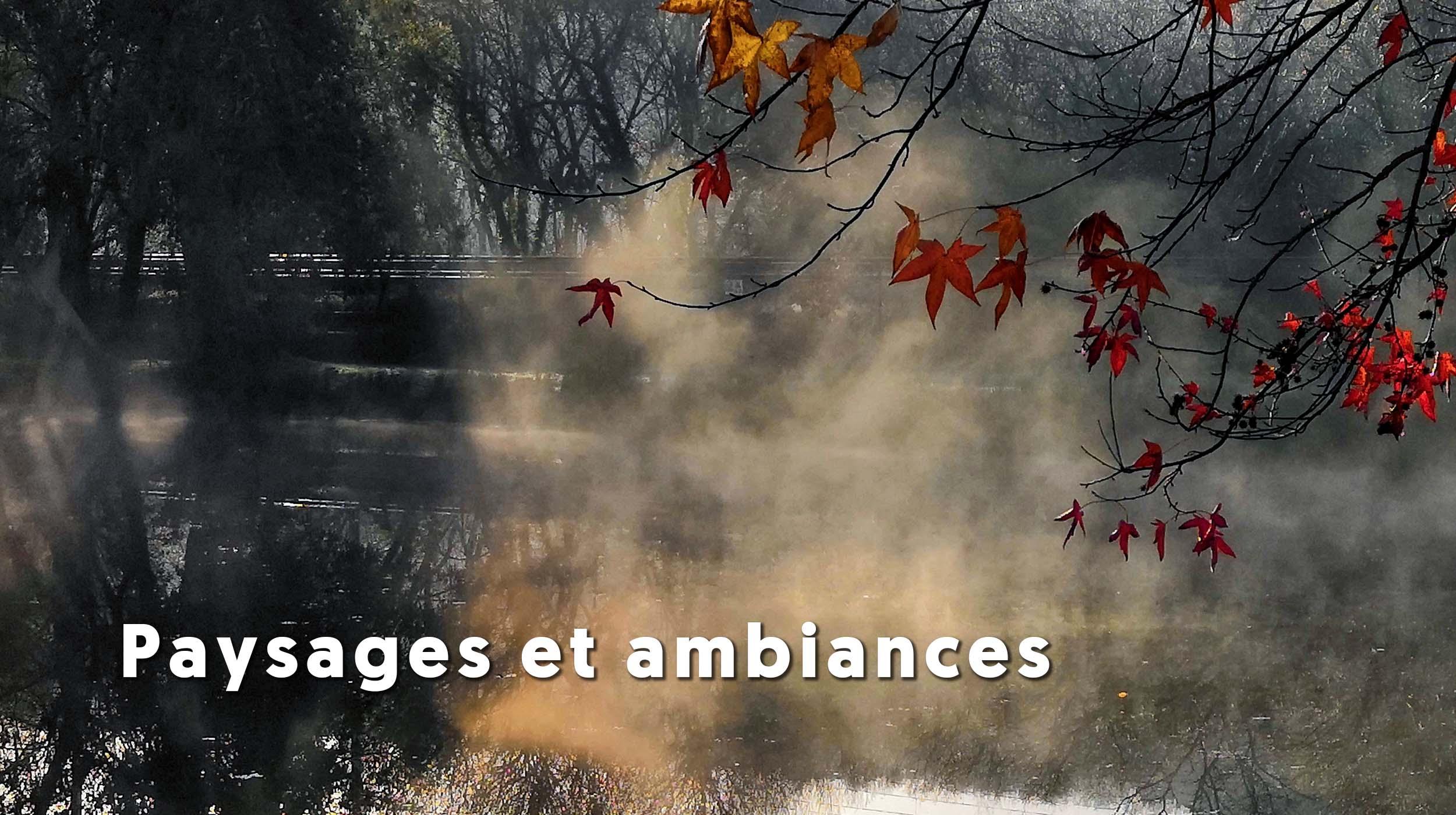 paysage-decor-brume-eau-automne